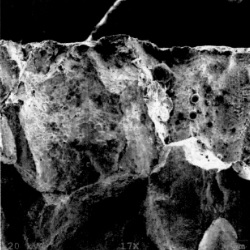 Scanning Electron Microscope image of fractured cast steel part